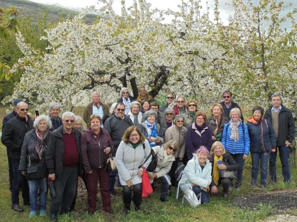 Passeio às Cerejeiras no Vale do Jerte e Parque de Monfragüe